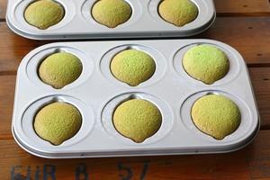 菠菜海绵蛋糕的做法 步骤8