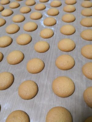 杏元饼干——船长家高比克风炉版的做法 步骤9