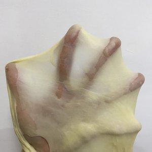 蔓越莓椰蓉面包卷的做法 步骤6