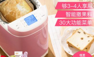 Donlim/东菱DL-T09G面包机廉价面包机也能出手套膜+无糖面包机!