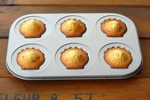 椰子橙香玛德琳的做法 步骤10