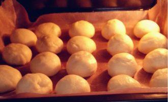 蜂蜜小餐包(一发短平快)制作方法