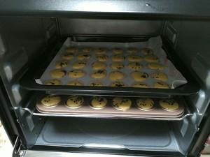 芝麻鸡蛋饼干的做法 步骤3