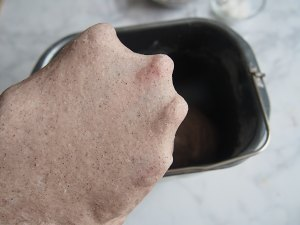 黑麦红枣核桃卷的做法 步骤5