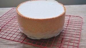 分蛋海绵蛋糕(北鼎食谱)的做法 步骤12