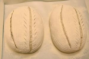 黑麦乡村面包的做法 步骤12