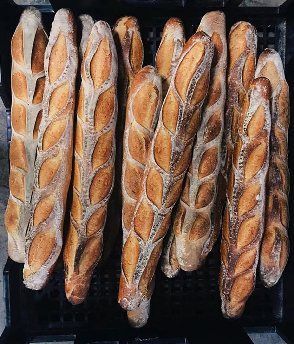 如何不再让面包人凌晨打面?冷藏法-早起救星!