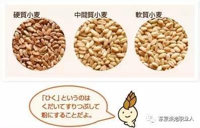 「7个步骤」教你如何区分日本粉、法国粉和国产粉?烘焙职人进阶篇
